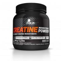Creatine Monohydrate Powder (550г)